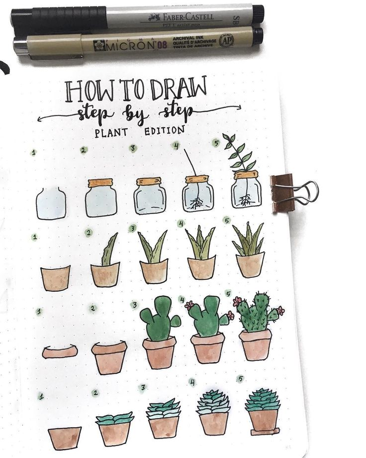 Bullet journal drawing ideas, bullet journal plant drawing tutorial. | @couleursduvent
