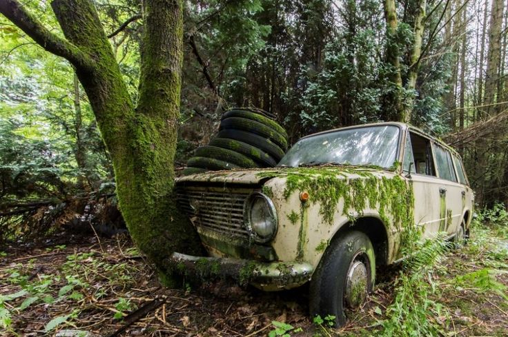 An abandoned Lada lost in a Belgium forest