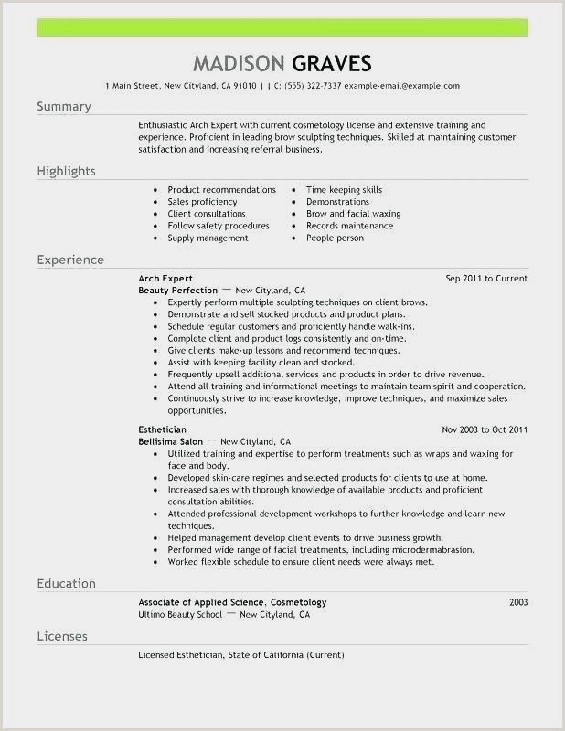 Professional Resume Example Instant Download 1 Page Resume Example For Ms Word Diy Resume E Good Resume Examples Professional Resume Examples Resume Examples