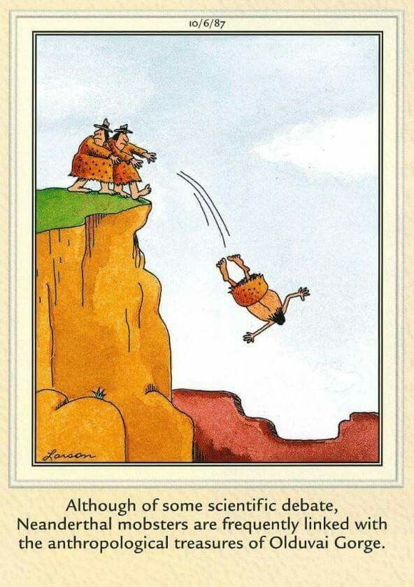 Image result for far side cartoons in color