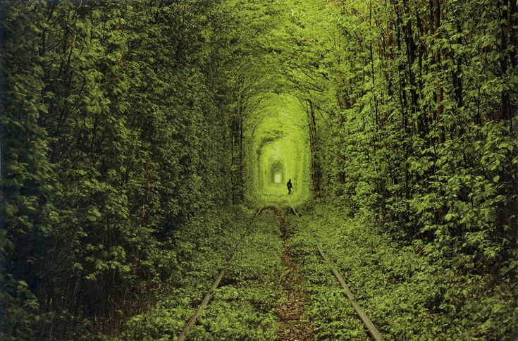 The 15 Most Surreal Destinations to Visit in 2015|Jinna Yang.  Tunnel of Love in Klevan, Ukraine