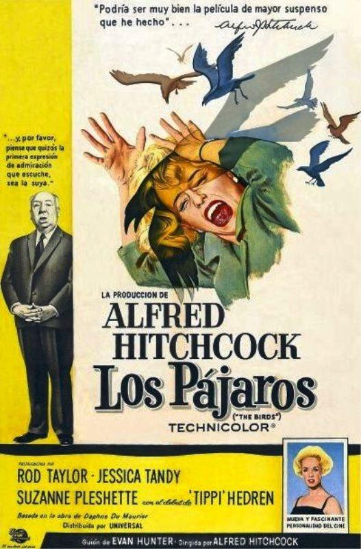 Los pájaros (1966) EEUU. Dir: Alfred Hitchcock. Terror. Películas de culto - DVD CINE 150