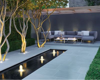 multi-trunk trees with uplighting and patio cover