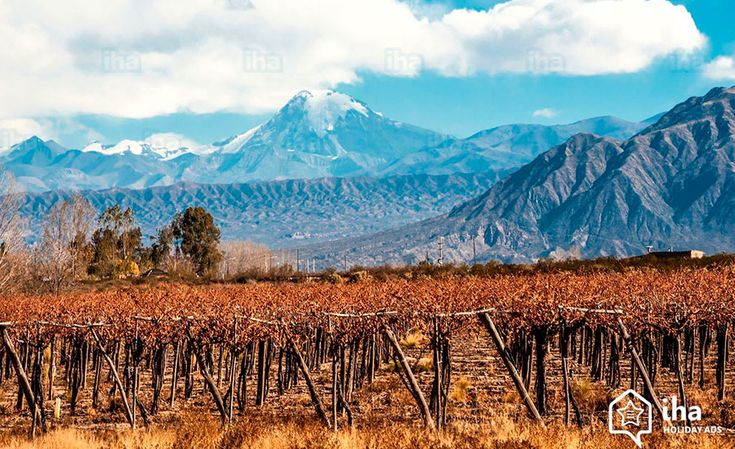 Monte Aconcágua, Mendoza, Vinas, Argentina