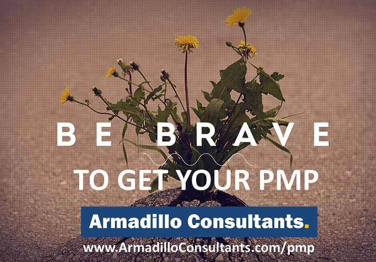 Be Brave To Get your PMP.  Get your Study plan and Road map from the SME directly by registering to PMP training by Armadillo Consultants  Call Mr. Hari to Enroll at +91 9538299652.  View course details & Enroll here. http://armadilloconsultants.com/pmp.