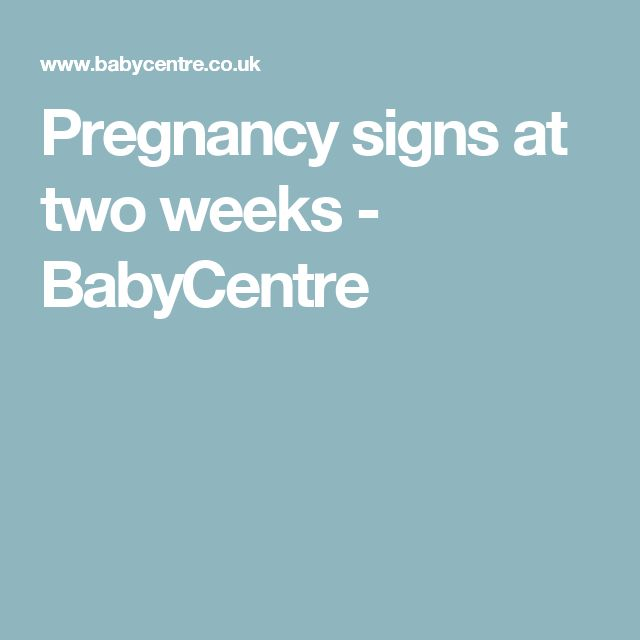 Pregnancy signs at two weeks - BabyCentre