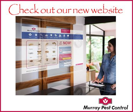 We have launched our new website, so come and have a look : http://murraypestcontrol.com.au/