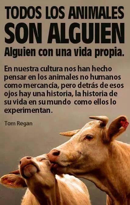 No hay mas que observar durante un breve espacio de tiempo al resto de los animales para darse cuenta de las verdades que encierra esta cita.