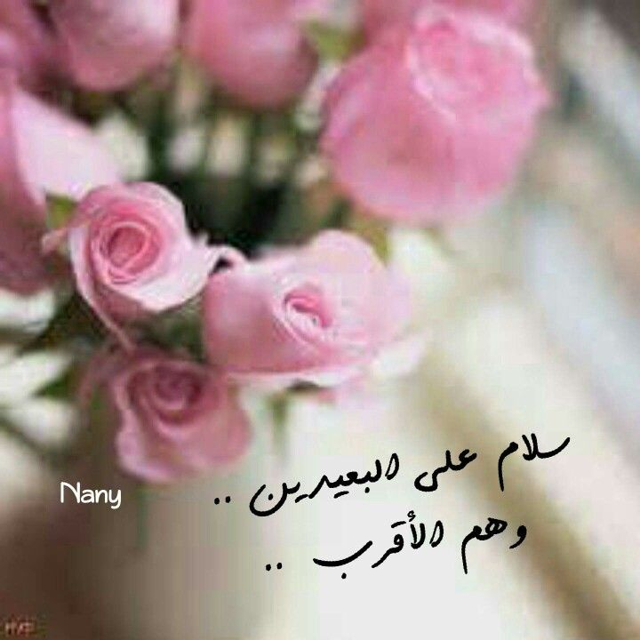 832201a4d سلام على البعيدين. . وهم اﻷقرب. . | Nany | Love quotes, Morning wish ...