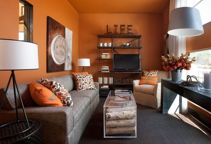 Omg love this orange and grey! Looking for warm colors for our new house!