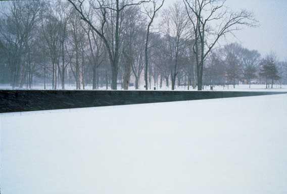 Maya Lin. Vietnam Veterans Memorial. 1980-1982. Minimalism.