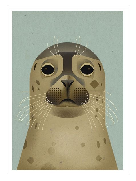 Dieter Braun Seal Postkarte