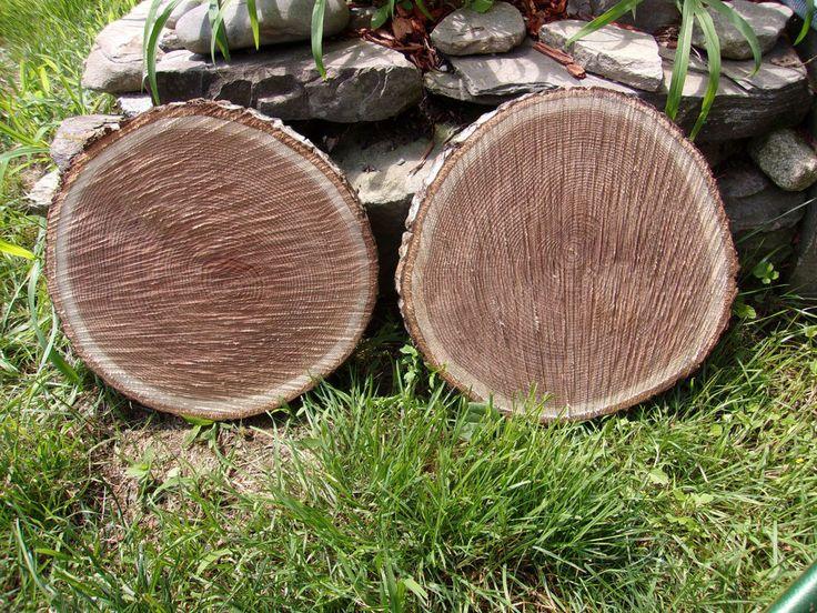 "10 oak Tree Log Slice Rustic Wedding Slab Log Cabin picture Plaquing 10"" to 11"""