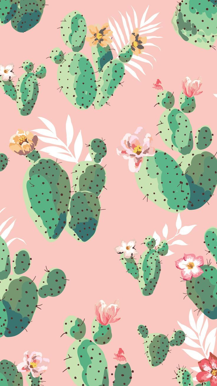 Pink And Green Cactus Iphone Wallpaper Cactus Green