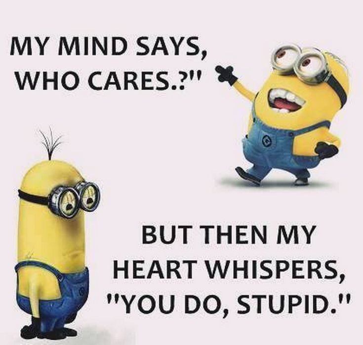Charming Entertaining Minions Quotes AM, Monday March 2016 PDT)   10 Pics   Funny  Minions
