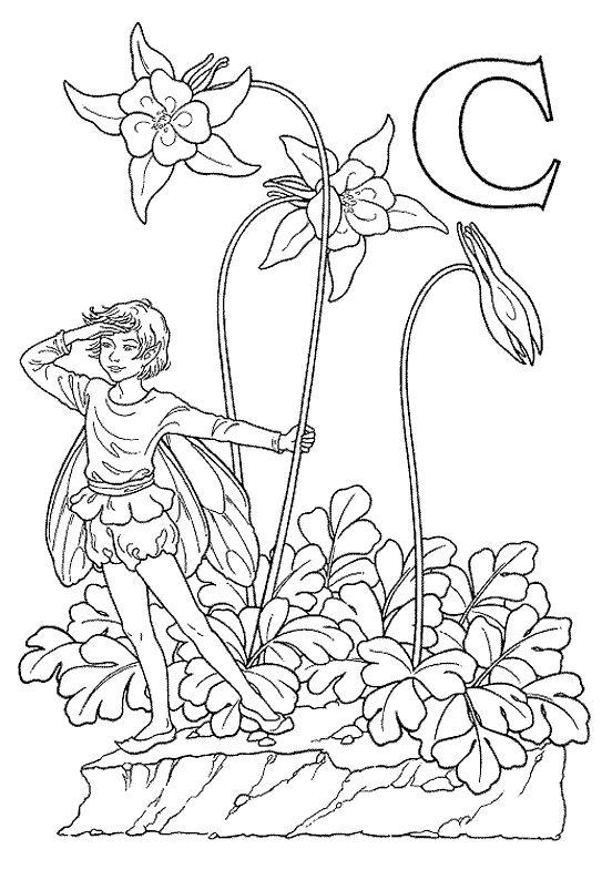 Fairy Alphabet Darcy May C