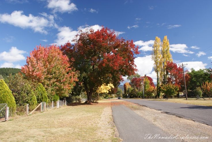 Cycling the Murray to Mountains Rail Trail (partly): Beechworth - Everton, Bright - Myrtleford sections | TheNomadicExplorers.com