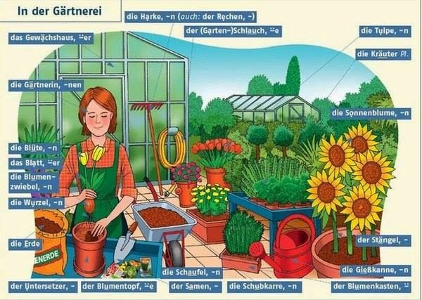 913 best German Language images on Pinterest Learn german - grten