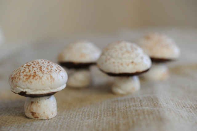 red spots meringue chocolate mushrooms thinking for halloween meringue ...