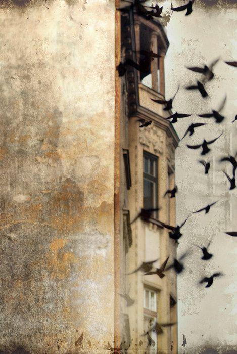 Praag fotografie gotische architectuur Print door KalstekPhotography