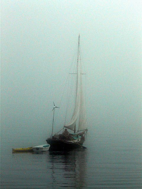 sail away into the fog...