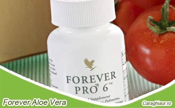 Forever Pro 6: