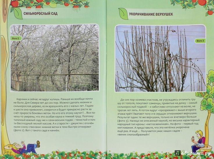 Иллюстрация 1 из 1 для Как снизить и осветлить сад - Николай Курдюмов | Лабиринт - книги. Источник: Лабиринт
