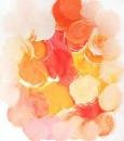 peach coral and gold wedding color - Google Search