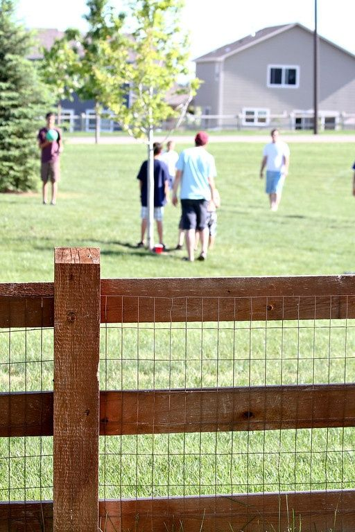 inexpensive fence that we will probably make