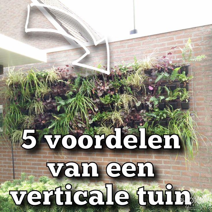 5 voordelen van een verticale tuin | Gevel planten