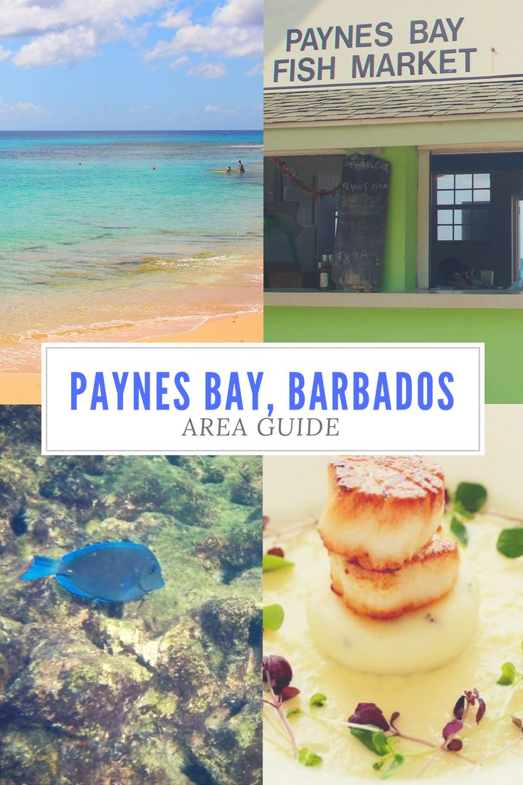 Join us as we explore beautiful Paynes