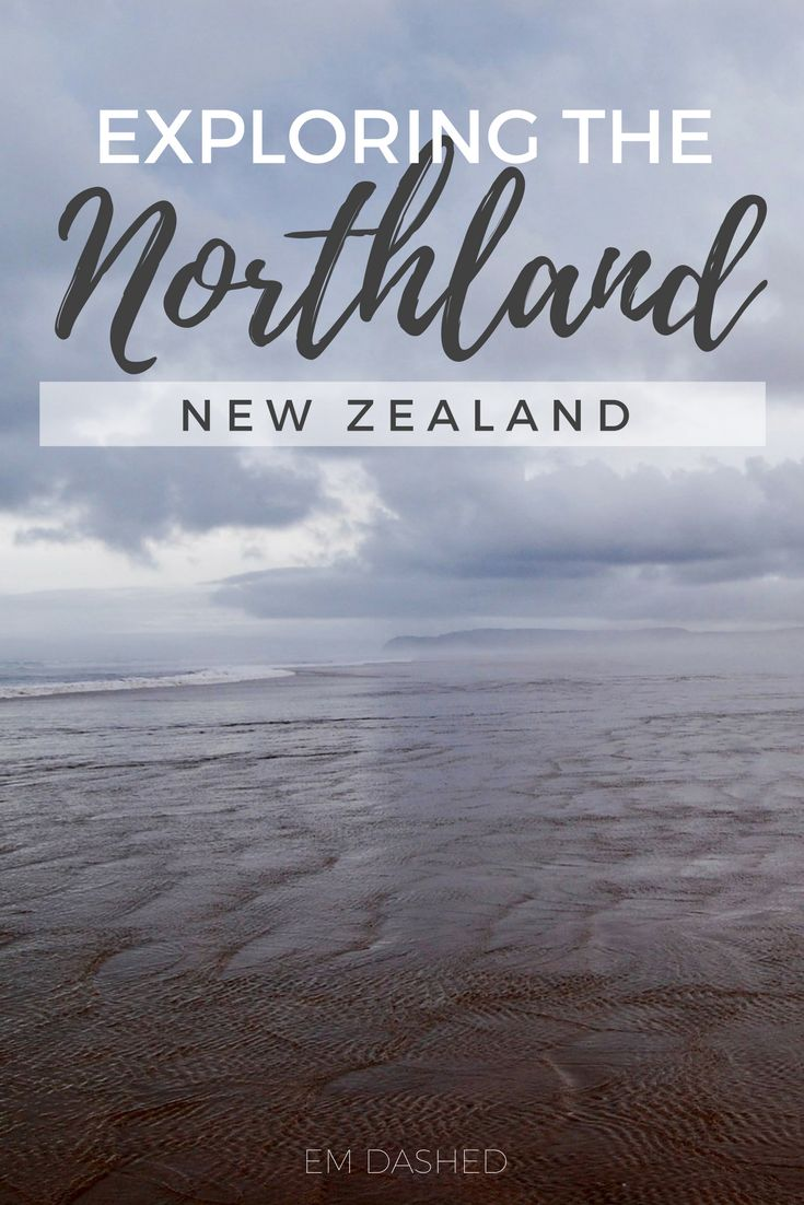 """See the Pacific Ocean meet the Tasman Sea at Cape Reinga, sandboard the dunes on Ninety Mile Beach, and eat """"world-famous"""" fish and chips in Mangonui. 