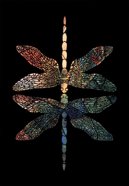 colorful pictures of dragon flies | dragonflies graphics and comments
