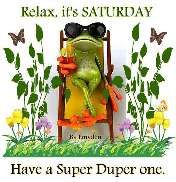 Image result for have a great saturday funny images