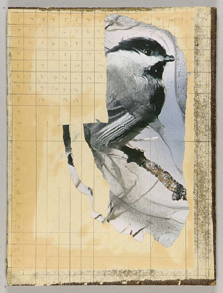 Mathematics and Music (chickadee on tree branch), Joseph Cornell
