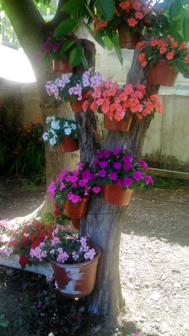 ideas replicadas de pinterest, alegran mi patio, dan vida a un tronco inerte