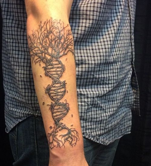 DNA Tree | tattoo | Pinterest | Trees and Dna