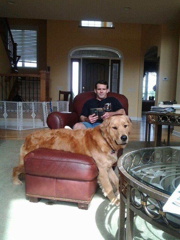 He's has no idea how big he is!