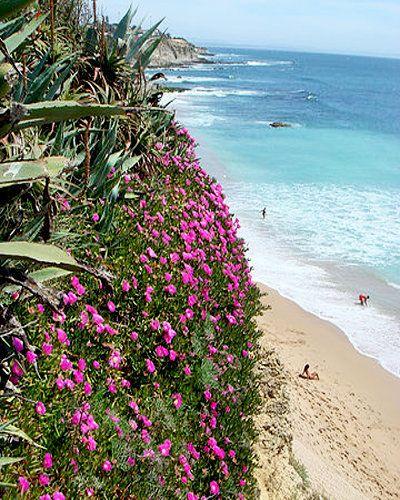 Parede beach, in the Lisbon-Cascais coastline. #Portugal