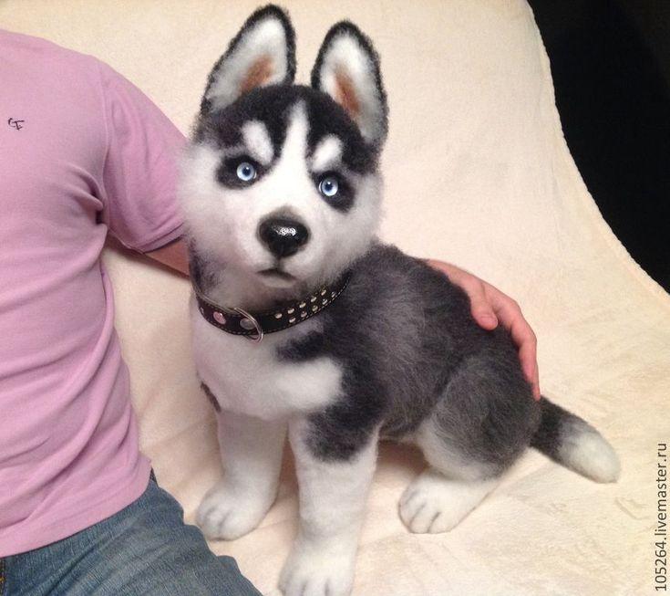Купить Щенок хаски 3 - щенок, хаски, собака, игрушка из шерсти, авторская ручная работа