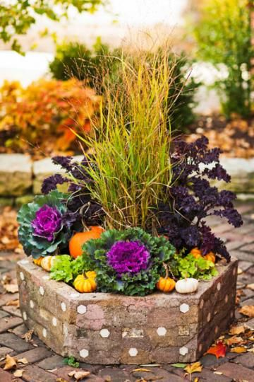 Use ornamental kale and colorful cabbages to spruce up fall container gardens! 5 steps to beautiful fall containers | Living the Country Life | http://www.livingthecountrylife.com/fall-containers/