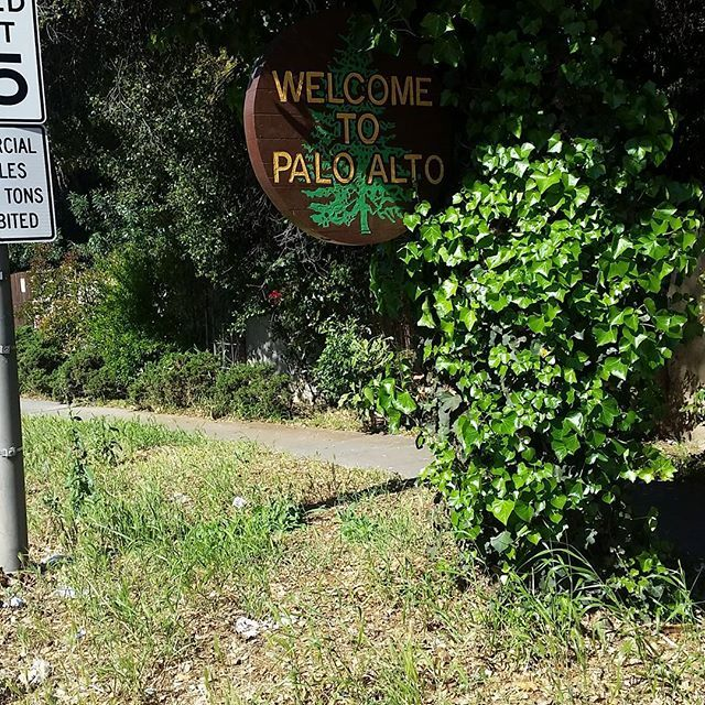Welcome back  #paloalto #stanford #california #montereylocals #pacificgrovelocals- posted by Ernesto Poccia https://www.instagram.com/pocciaernesto. See more of Pacific Grove, CA at http://pacificgrovelocals.com