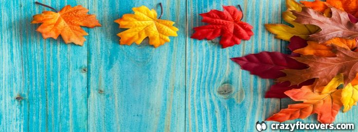 Autumn Maple Leaves Wood Facebook Cover Photo - Facebook Timeline Cover Photo…