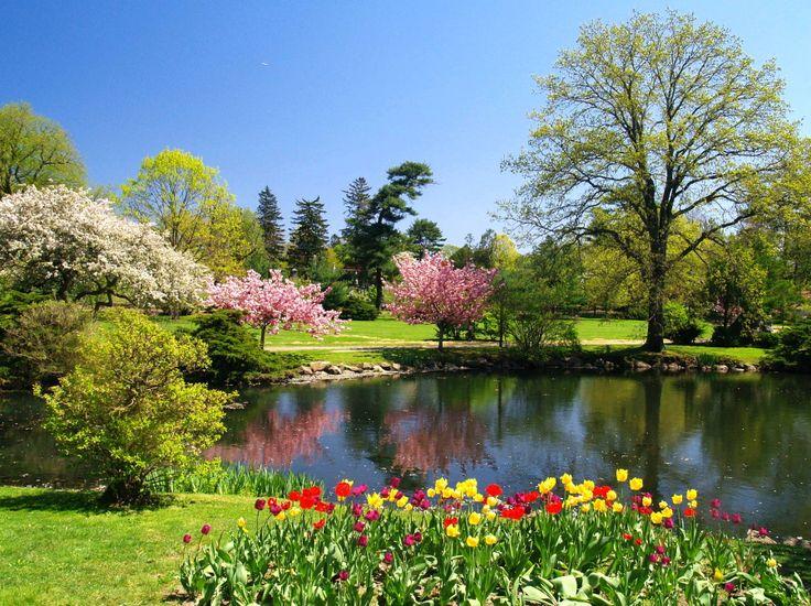 binney park pics | Binney Park in Spring by `davincipoppalag on deviantART