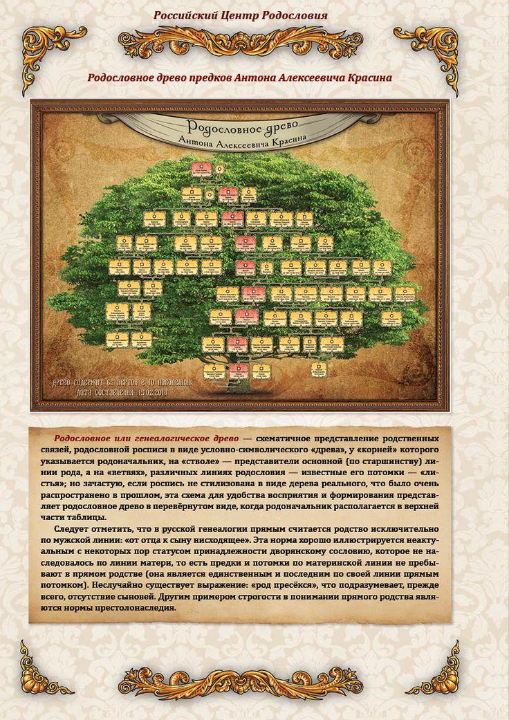 ПРИМЕР ОТЧЕТА ПЕРВОГО ЭТАПА - родословное дерево