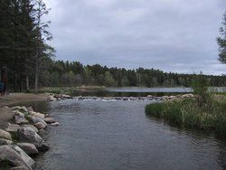 The source of the Mississippi River on the edge of Lake Itasca