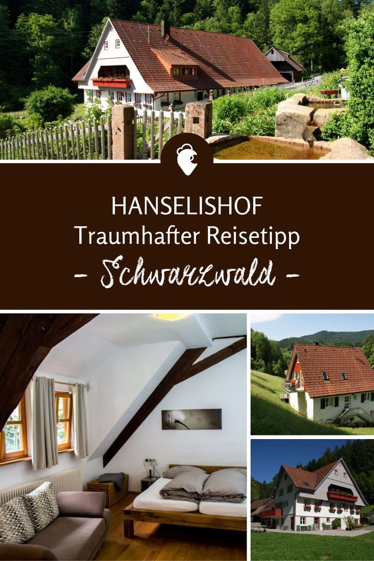 Schwarzwald Urlaub Reiseziele Tipps Deutschland Wandern Wanderurlaub Natur Ferienhau Schwarzwald Urlaub Ferienwohnung Schwarzwald Outdoor Dekorationen