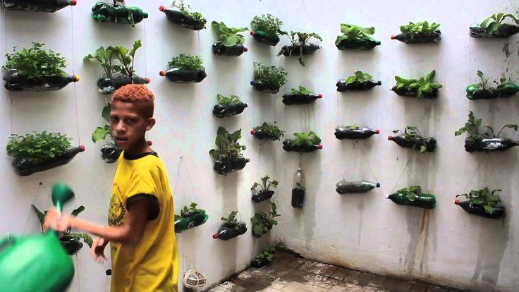 Projeto Hortas Verticais