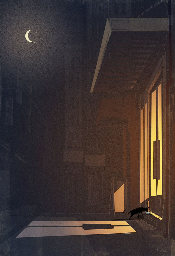 The cat came back. 2015 #pascalcampion