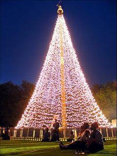 Christmas tree in Nigeria